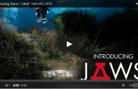 Asphalt Yacht Club Welcomes Jaws