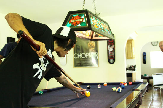 Moose playing pool